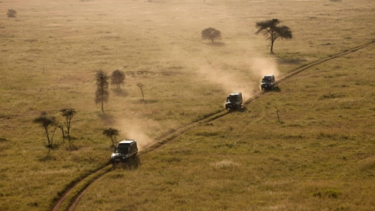 Safari Tarangire + Ngorongoro + Lake Manyara (3 days)